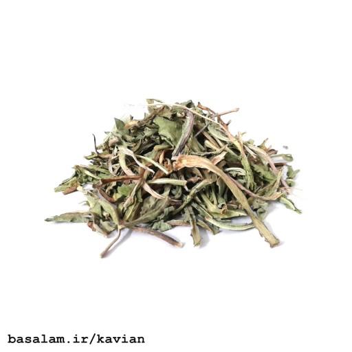 عرق کاسنی کاویان (1000 گرم) - باسلام