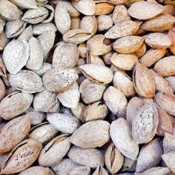 بادام منقا(کاغذی)
