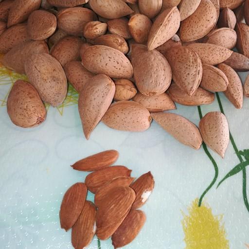 بادام سنگی امسالی شیرین 1000 گرمی- باسلام