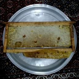 عسل طبیعی آویشن موم دار