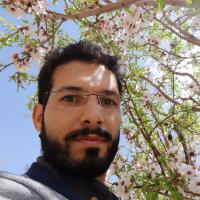 حامد امامی