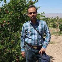 محسن اتابکی