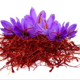 زعفران سرگل 1مثقالی کشاورز (تضمین کیفیت)
