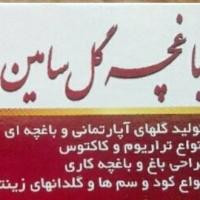 سامان فراهانی