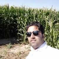 حمید ایران زاد
