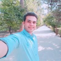 محمد رفیعی