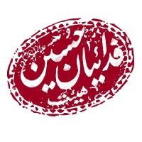 محمد یاسین طبیب