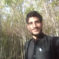 محمد حسین رفیعی