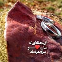 محبوبه  شریفی