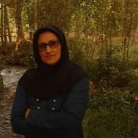 مینا هوازاده