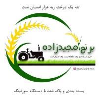 بهروز مجیدزاده