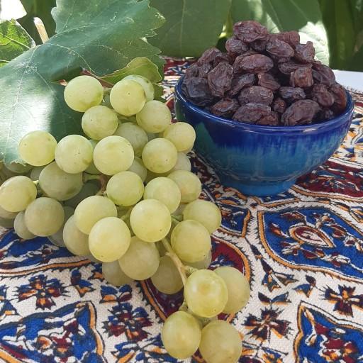 مویز قرمز شیرازی (1000 گرم)- باسلام