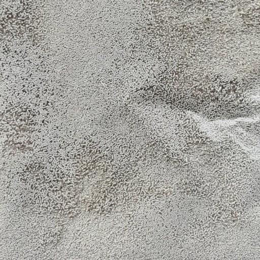فلفل سیاه 250گرمی- باسلام
