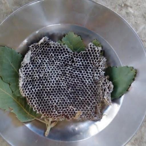 عسل باموم طبیعی(عسل فروشی مادر )- باسلام