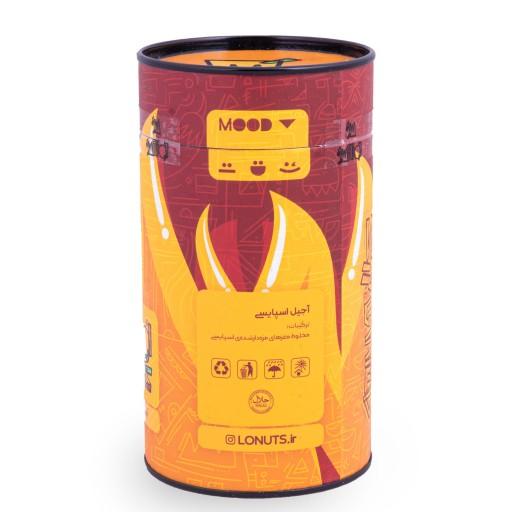 اجیل اسپایسی 250 گرمی