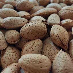 بادام سنگی 900 گرمی