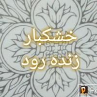 محسن عرب دشتی