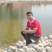 محمودطوبایی