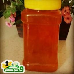 عسل طبیعی گون 500 گرمی فدک