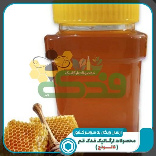 عسل تغذیه ممتاز فدک (1کیلو)(یکاسه)- باسلام