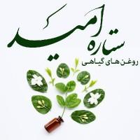 حمیده سلمانی/ستاره امید