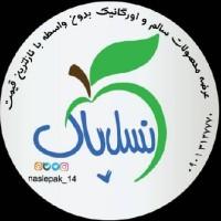 boshra alavi